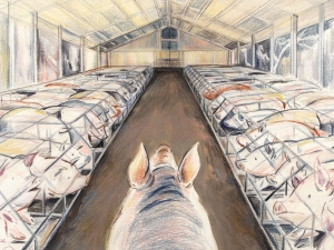 The Meat Industry's Bestiality Problem